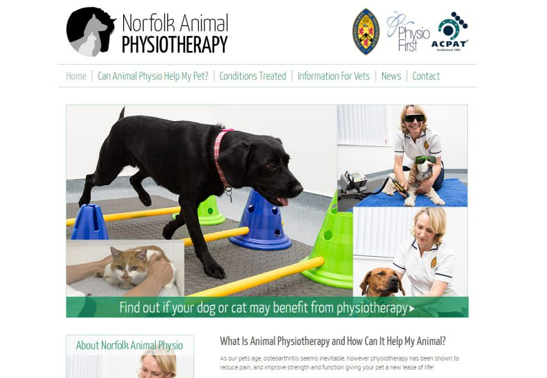 Picture of Norfolk Anima Physio home page