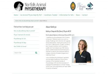Picture of Norfolk Anima Physio web page