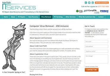 Picture of Norfolk IT Services web page